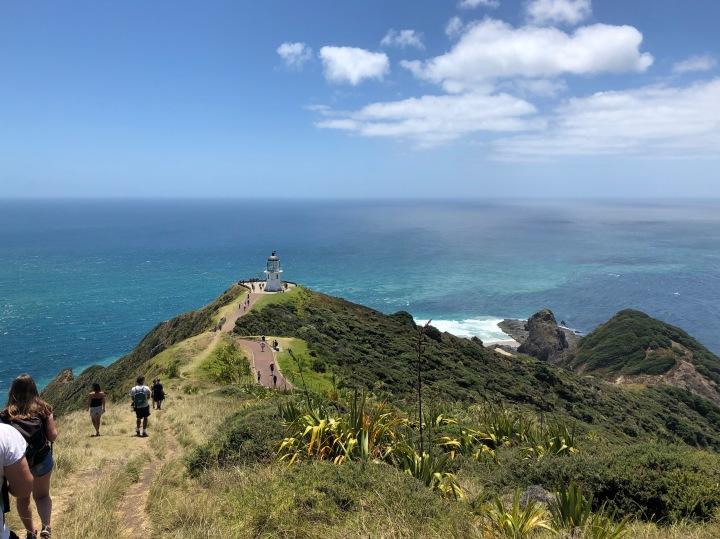 One week in NewZealand